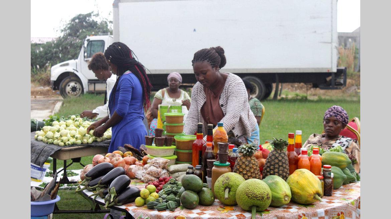 Entrepreneuriat féminin : Pour une meilleure utilisation