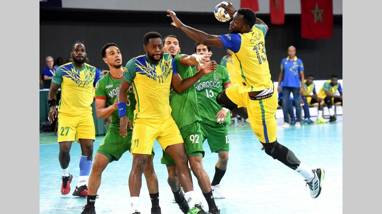 Handball : Des doutes autour des Panthères