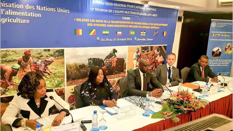 Afrique centrale : Comment doper la production agricole?