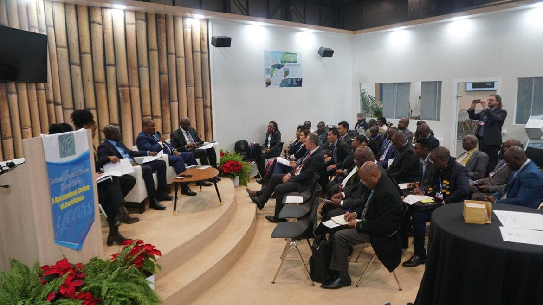 COP25 : Lee White actif au segment ministériel
