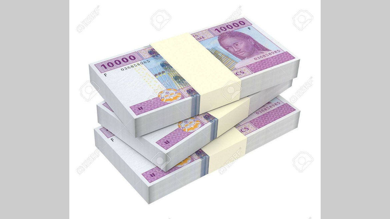 Abandon du franc CFA : L'heure de la mue…