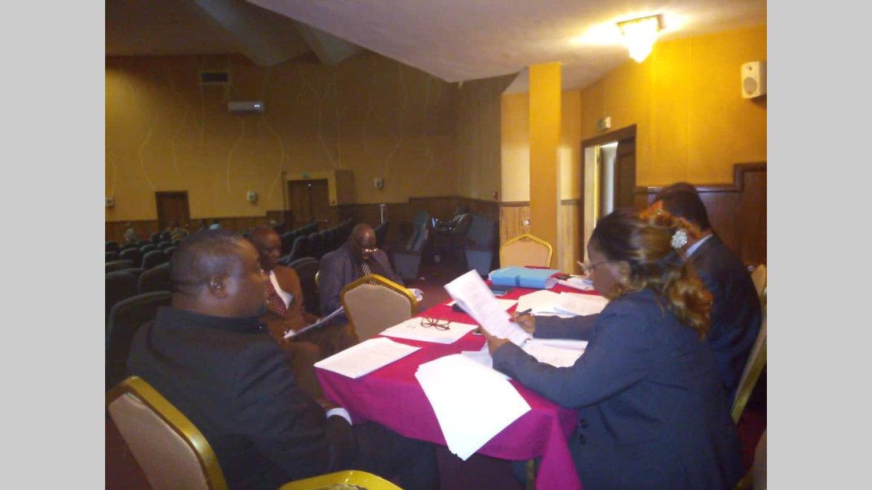CESE : Les travaux se poursuivent en commission