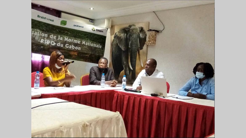 Huile de palme : le Gabon tient sa référence RSPO