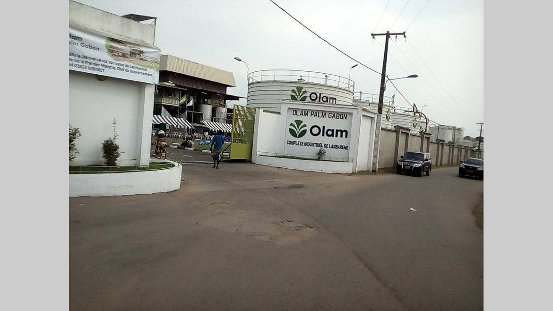 Olam Palm : autorisé à produire du biocarburant
