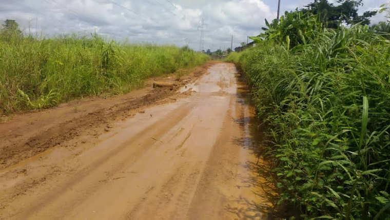 Assassinat : un ressortissant ghanéen mortellement tué par son compatriote à Essassa
