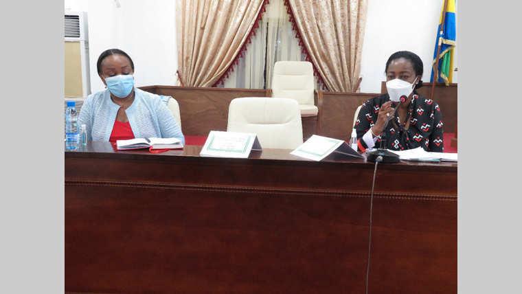 Codes civil et pénal : le projet de modification à l'examen des députés