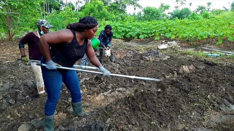 Agriculture : Le paysannat agricole relève des goulots pérennes