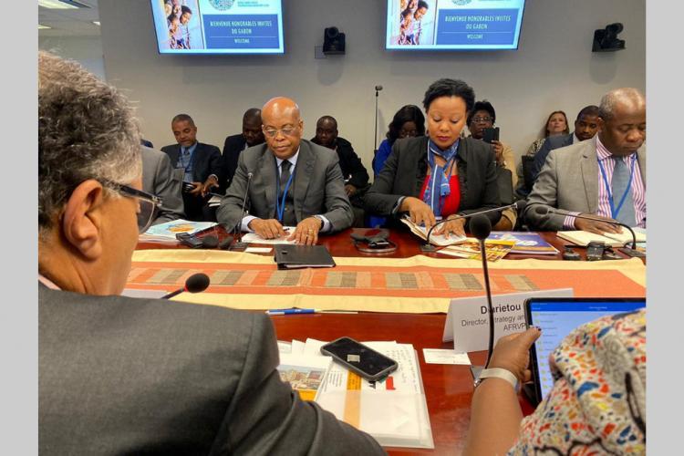 Diversification de l'économie : CAB4 et PDIL2: le Gabon sollicite plus de financements