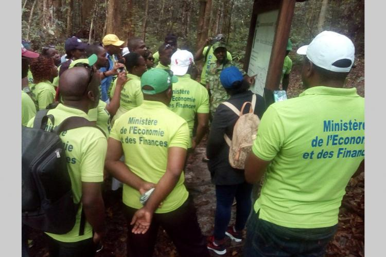 Ecotourisme : Une randonnée pour l'esprit d'équipe