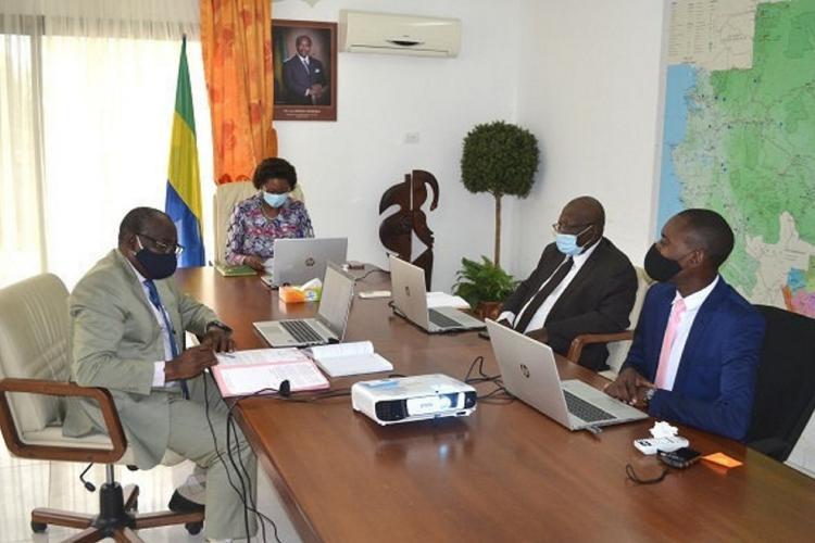 Investissements : le groupe marocain Walili cible les secteurs prioritaires du Gabon