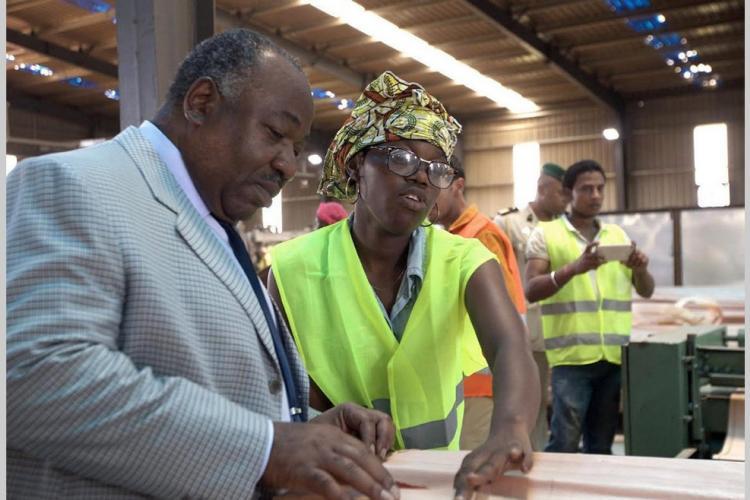 Secteur bois : la Zerp de Nkok élue meilleure zone franche d'Afrique