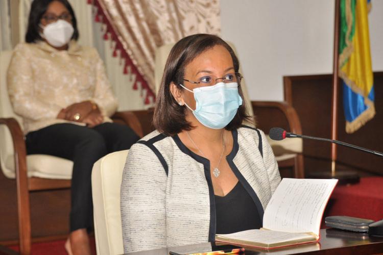 Réorganisation de l'ANFPP : le projet de loi au palais Léon Mba