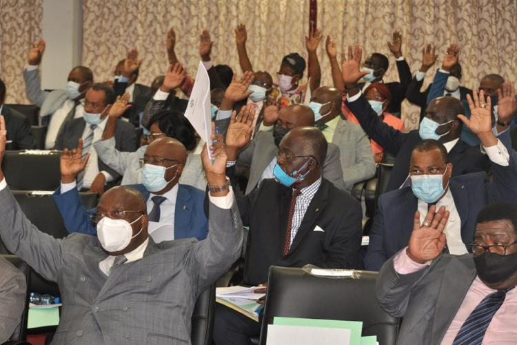 Budget 2021 : l'Assemblée nationale adopte le texte