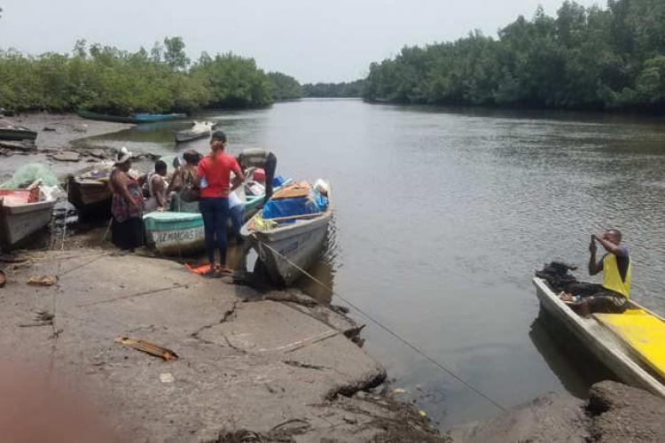 Pêche : Bambouchine, nouvel eldorado