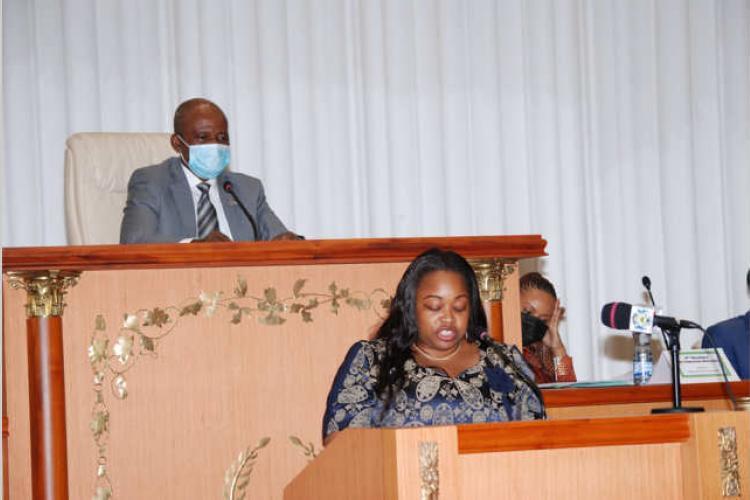 Assemblée nationale : Quatre ministres interpelés par les députés