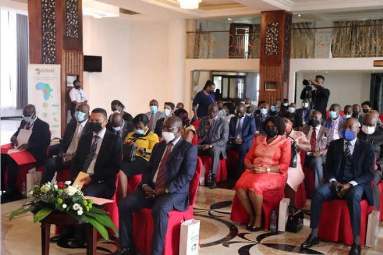 Séminaire Caistab : Comment accroître la contribution du café dans le développement économique du Gabon
